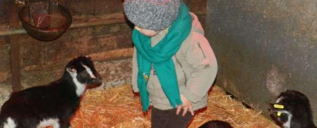 Ce mardi 1 mars, nous avons été conviés à visiter la ferme des parents d'Elsa et Léo sur la commune de Sazeret. Une occasion pour les 10 enfants présents fréquentant […]