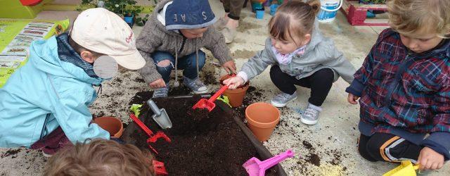 Ce jeudi 26 avril, le MAB et le RAM se sont de nouveau retrouvés au Multi accueil de Bézenet, mais pour un atelier jardinage cette fois. Chaque enfant a pu […]
