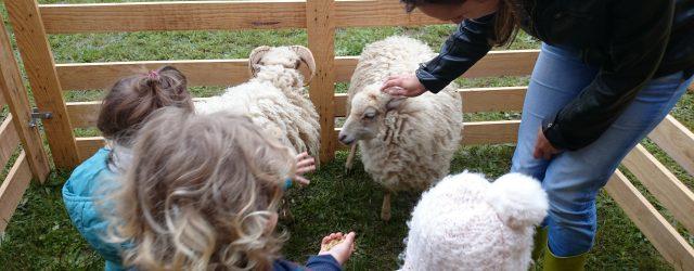 Ce jeudi matin, le Relais d'Assitantes Maternelles (RAM) et le Multiaccueil de Bézenet (MAB) ont reçu de la visite. Princesse, la lapine, Pouik et Pouik les cochons d'Inde, Eliot le […]