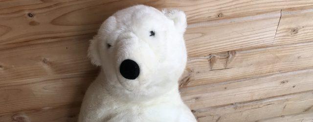 Aujourd'hui, mardi 19 juin 2018, est un jour particulier pour les enfants et les professionnelles du multi-accueil de Bezenet 1,2,3 PETITS PAS. C'est le jour de la «Chasse a l'ours» […]